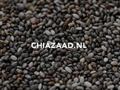 Chiazaad.nl