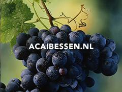 Acaibessen.nl