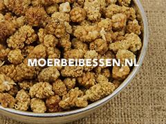 Moerbeibessen.nl