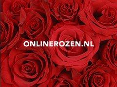 Onlinerozen.nl