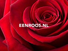 Eenroos.nl