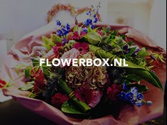 Flowerbox.nl