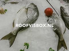 Roofvisbox.nl
