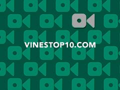 Vinestop10.com